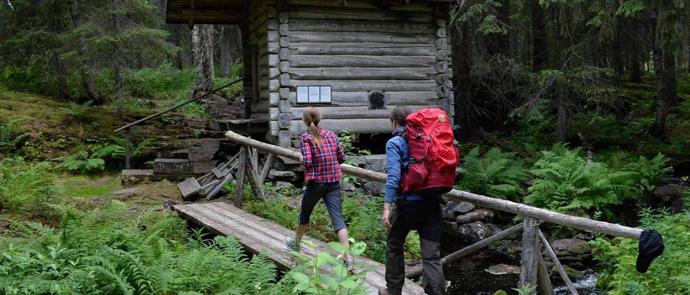 Vasaloppsarenan sommar vandring skog 1350x690