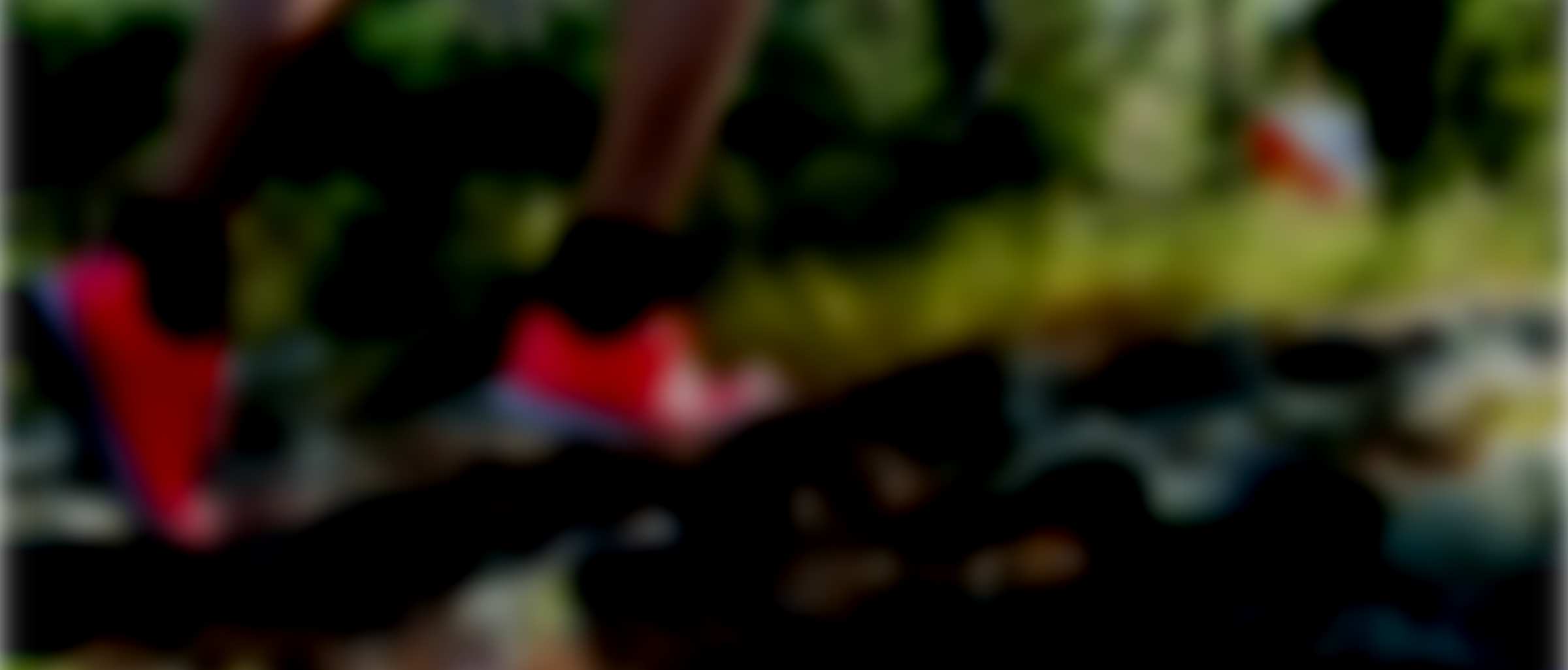 Hittaorientering blur dark