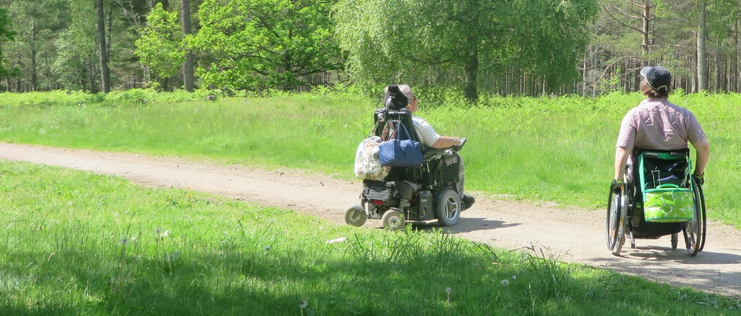 Skogstur 8326  2